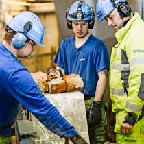 Industrisanering på Domsjö fabriker